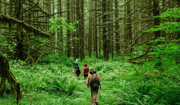 A Photo Of Eco Tourism