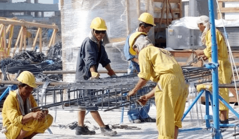 The Important Of Division Of Labor To A Capitalist Economy